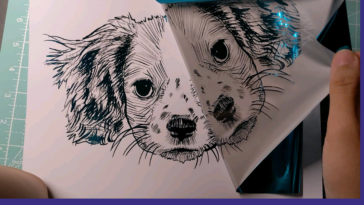 Removing the foil from my drawing of my friend's puppy, Pixel (turn on the sound)