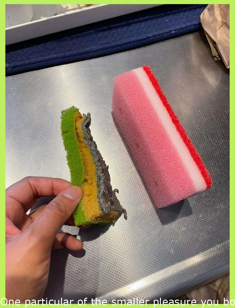 One of the small happiness you got as an adult is changing the sponge.