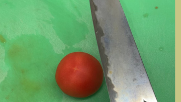 A few people didn't like the paper cutting, so how about a tomato!