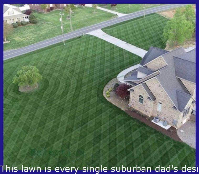 This lawn is every suburban dad's dream