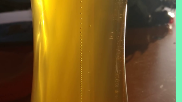 This dead straight line of bubbles in a beer