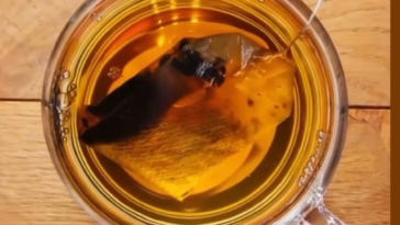 Zooming into a teabag in water
